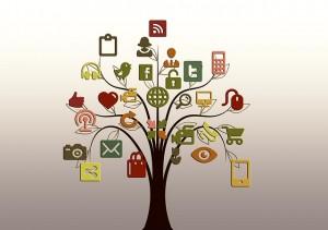 Public Domain CC0- geralt- http://pixabay.com/fr/arbre-structure-r%C3%A9seaux-internet-200795/