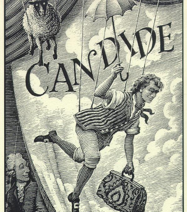 Le rapport Orsenna, Candide au pays des bibliothèques